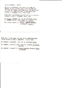 David Steinschneider docs non datés témoignages