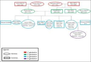WEILL_Clarisse_arbre_genealogique