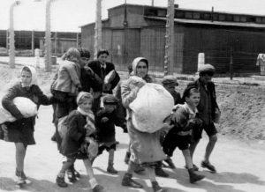 album auschwitz sélection femme et enfant