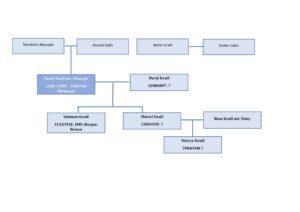 arbre généalogique israel