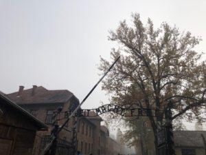 voyage en Pologne – camp d'Auschwitz-Birkenau 1